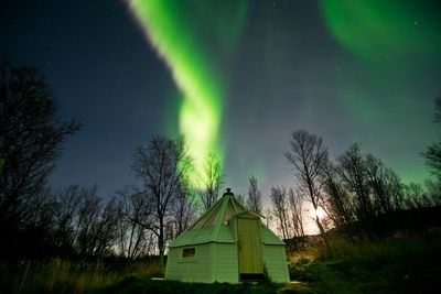 13 Day Search The Northern Lights
