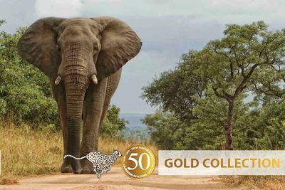 Botswana Luxury Camping Safari