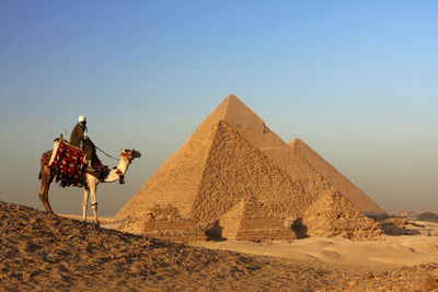 Collette Tours Egypt Fly Cruise